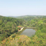Head For The Hills And Plains Around Goa